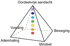 Piramide van Inzicht ontwikkeld door Insight Adventure - trainer Evert Heinz